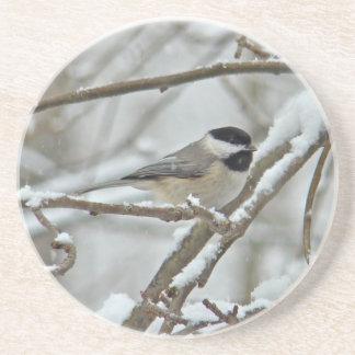 Chickadee Negro-Capsulado en tormenta de la nieve Posavasos De Arenisca