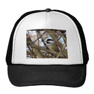 Chickadee Negro-capsulado Gorras De Camionero