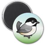 Chickadee Negro-capsulado Iman Para Frigorífico