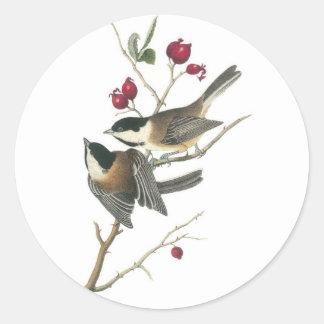 Chickadee Negro-capsulado, Juan Audubon Pegatina Redonda