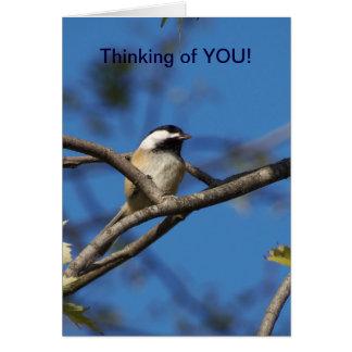 Chickadee Negro-capsulado, pensando en usted Tarjeta De Felicitación