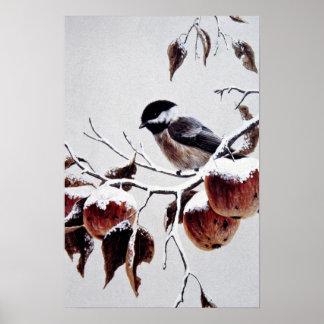 chickadee Negro-capsulado Póster