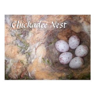 Chickadee Nest Postcard