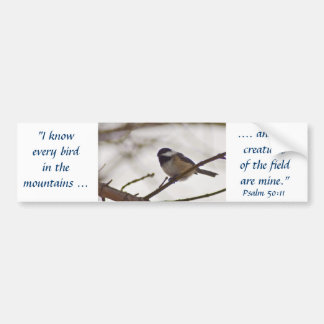 Chickadee on a Twig Bumper Sticker
