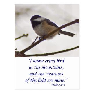 Chickadee on a Twig Postcard