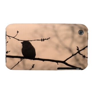 Chickadee on Branch in Twilight Silhouette iPhone 3 Cover