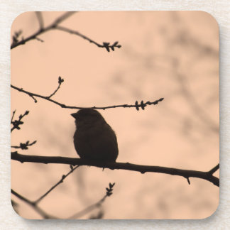 Chickadee on Branch in Twilight Silhouette Beverage Coaster