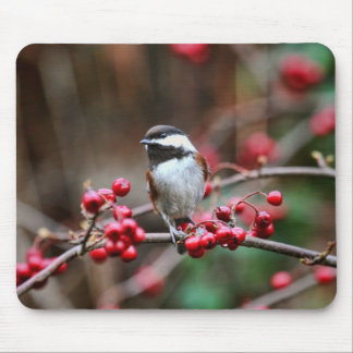 Chickadee on Branch with Red Berries Mouse Pad