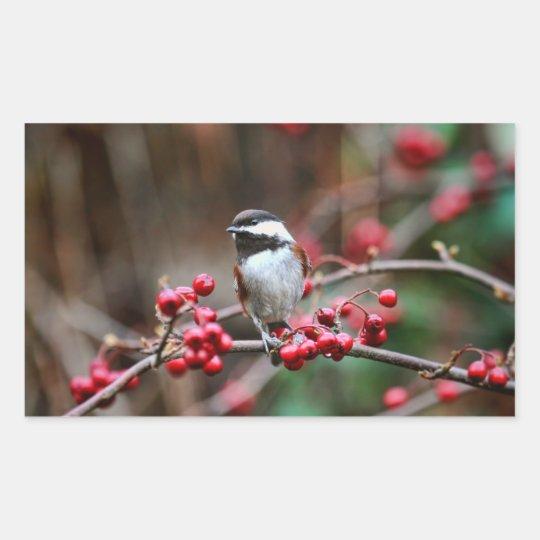 Chickadee on Branch with Red Berries Rectangular Sticker