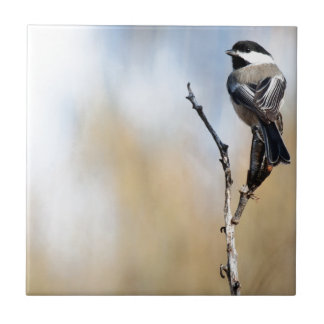Chickadee on Yucca Pod Ceramic Tile
