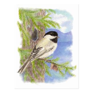 Chickadee original de la acuarela en árbol de pino postal