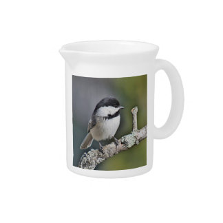 Chickadee photo beverage pitcher