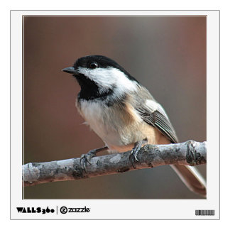 Chickadee photo wall sticker