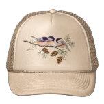 CHICKADEE & PINE CONES by SHARON SHARPE Trucker Hat