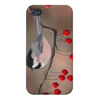 CHICKADEE & RED BERRIES by SHARON SHARPE iPhone 4/4S Covers