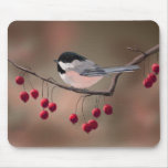 CHICKADEE & RED BERRIES by SHARON SHARPE Mouse Pad