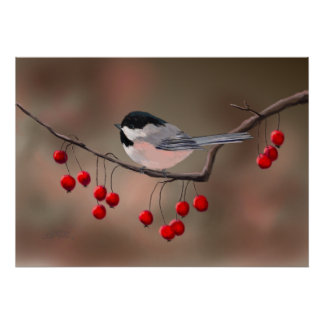 CHICKADEE & RED BERRIES by SHARON SHARPE Poster