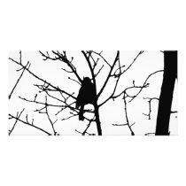 Chickadee Silhouette Love Bird Watching Card