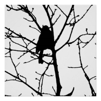 Chickadee Silhouette Love Bird Watching Poster