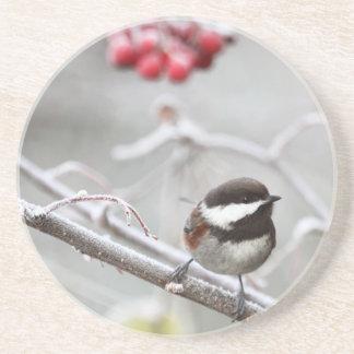 Chickadee y bayas rojas en invierno posavaso para bebida
