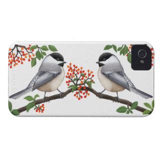Chickadees con la caja intrépida de Blackberry de Case-Mate iPhone 4 Coberturas