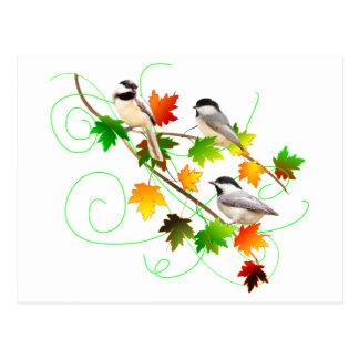 Chickadees en hojas de la caída postales