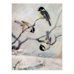 Chickadees in the Snow Postcard