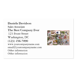 Chickadees in Winter Collage Double-Sided Standard Business Cards (Pack Of 100)