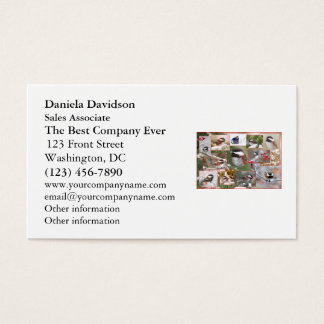 Chickadees in Winter Collage Business Card