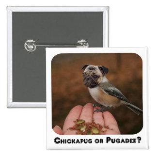 ¿Chickapug o Pugadee divertido Botón Pin