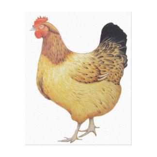Chicken 2012 canvas print