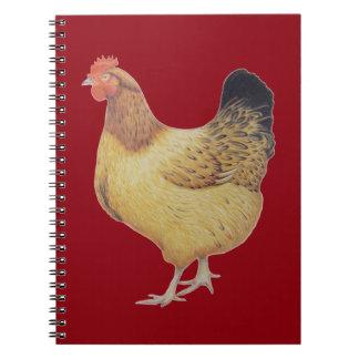 Chicken 2012 notebook