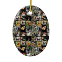 Chicken,And Rooster Photo Collage, Ceramic Ornament