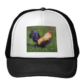Chicken Art Stuart Bantam Rooster Hat