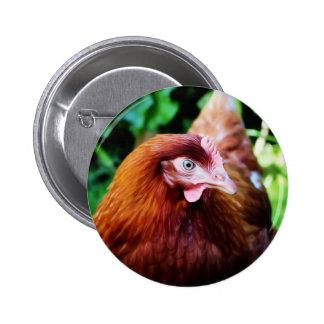 Chicken badge
