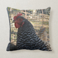 Chicken Barnyard Farm Animal Throw Pillow