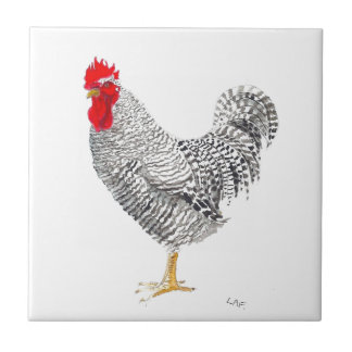 Chicken barred plymouth rock rooster tile