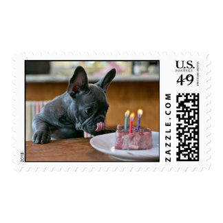 Chicken Birthday Stamp