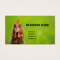 Chicken - Business Card