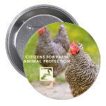 Chicken Campaign Button