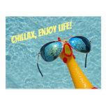 🤣 Funny Chicken Chillax & Enjoy Postcard
