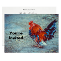 Chicken Colorful Rooster Photo Birthday Invitation