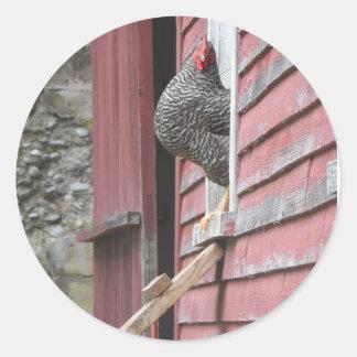 Chicken Coop Classic Round Sticker