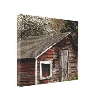 Chicken Coop in Spring Canvas Print