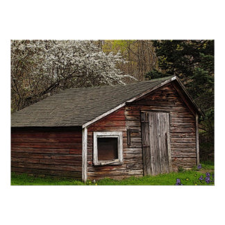 Chicken Coop in Spring Poster