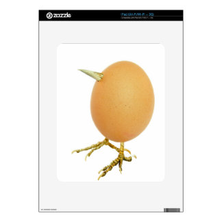 Chicken egg as bird with beak and legs skins for the iPad