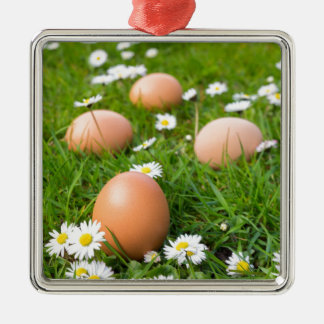 Chicken eggs in spring grass with daisies metal ornament