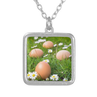 Chicken eggs in spring grass with daisies silver plated necklace
