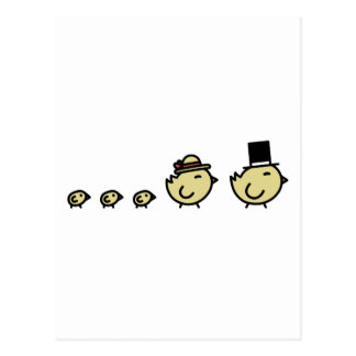 Chicken Family Postcard