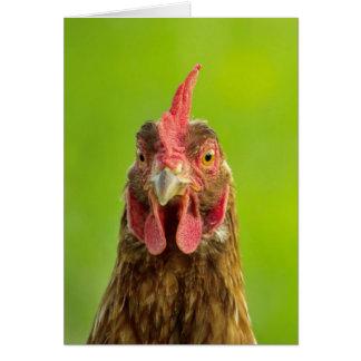 Chicken - Greeting Card